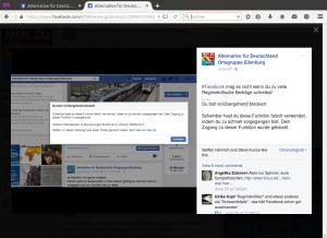 Bildschirmfoto AfD-Ortsgruppe Eilenburg